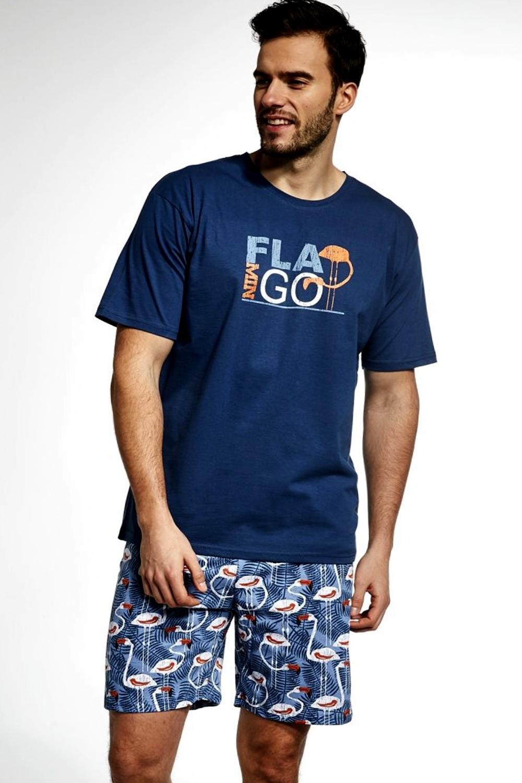 Pijama pentru bărbați 326/70 Flamingo
